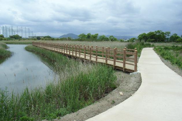 友内川下流トップ